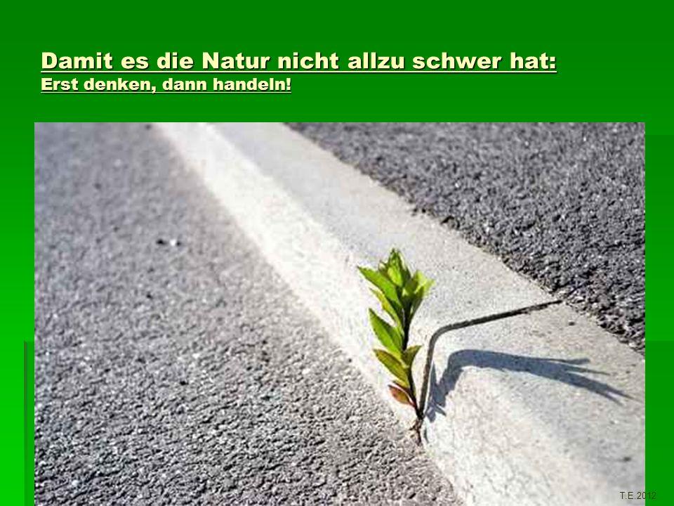 Damit es die Natur nicht allzu schwer hat: Erst denken, dann handeln! T.E.2012