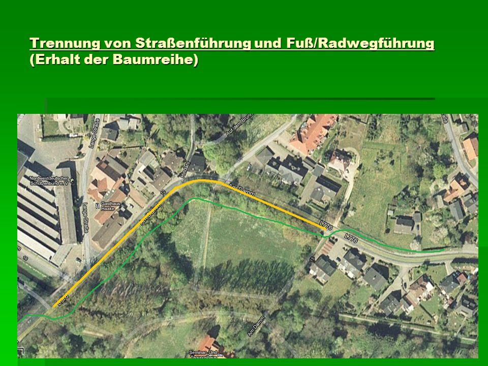 Trennung von Straßenführung und Fuß/Radwegführung (Erhalt der Baumreihe)