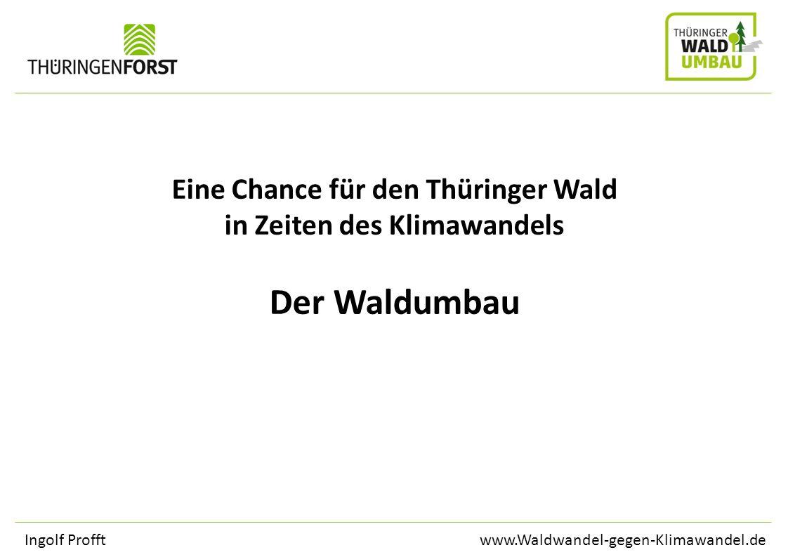 www.Waldwandel-gegen-Klimawandel.deIngolf Profft Eine Chance für den Thüringer Wald in Zeiten des Klimawandels Der Waldumbau