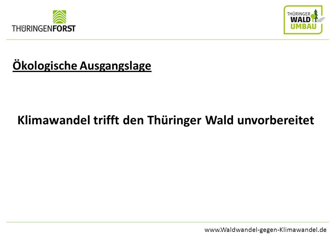 www.Waldwandel-gegen-Klimawandel.de Ökologische Ausgangslage Klimawandel trifft den Thüringer Wald unvorbereitet