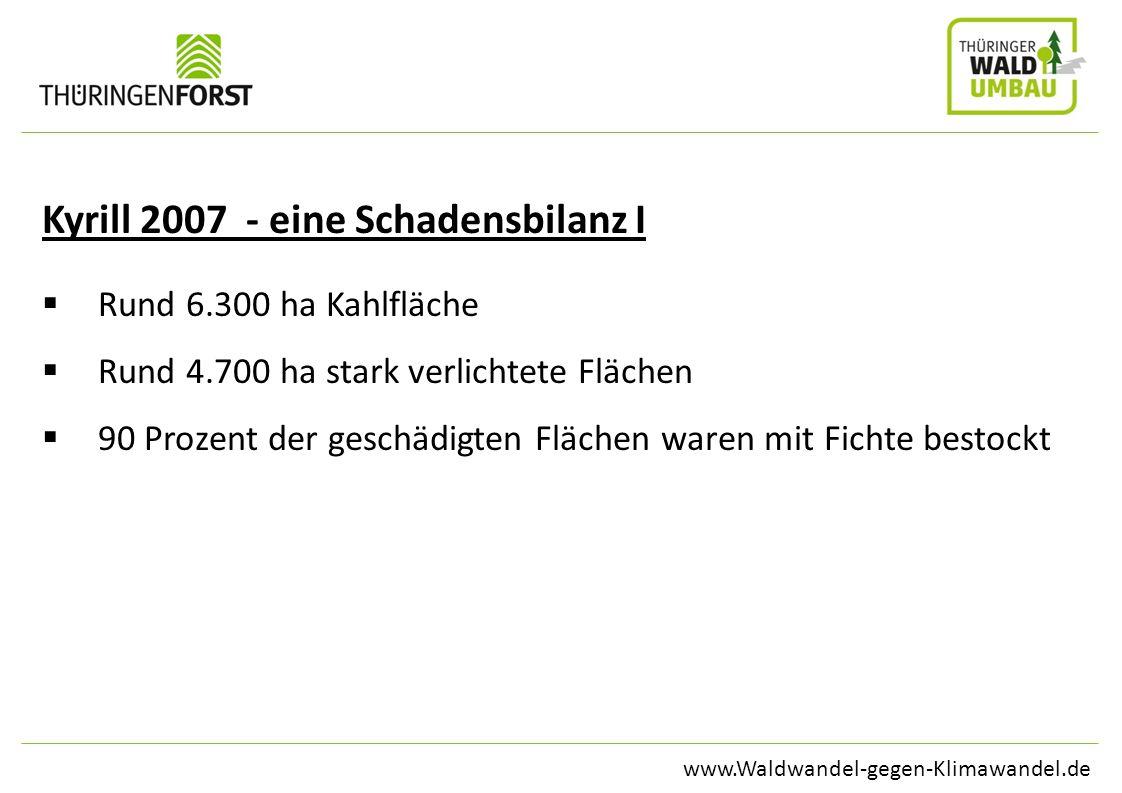 www.Waldwandel-gegen-Klimawandel.de Kyrill 2007 - eine Schadensbilanz I Rund 6.300 ha Kahlfläche Rund 4.700 ha stark verlichtete Flächen 90 Prozent de