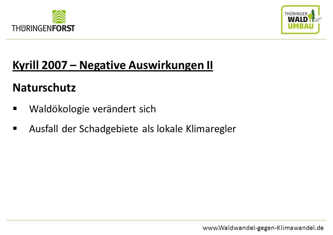 www.Waldwandel-gegen-Klimawandel.de Kyrill 2007 – Negative Auswirkungen II Naturschutz Waldökologie verändert sich Ausfall der Schadgebiete als lokale