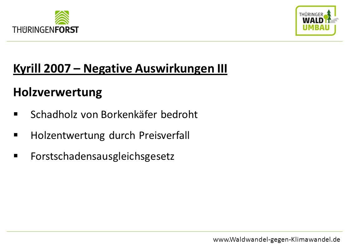 www.Waldwandel-gegen-Klimawandel.de Kyrill 2007 – Negative Auswirkungen III Holzverwertung Schadholz von Borkenkäfer bedroht Holzentwertung durch Prei