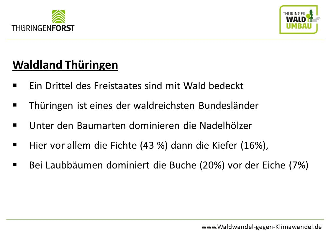 www.Waldwandel-gegen-Klimawandel.de Waldland Thüringen Ein Drittel des Freistaates sind mit Wald bedeckt Thüringen ist eines der waldreichsten Bundesl