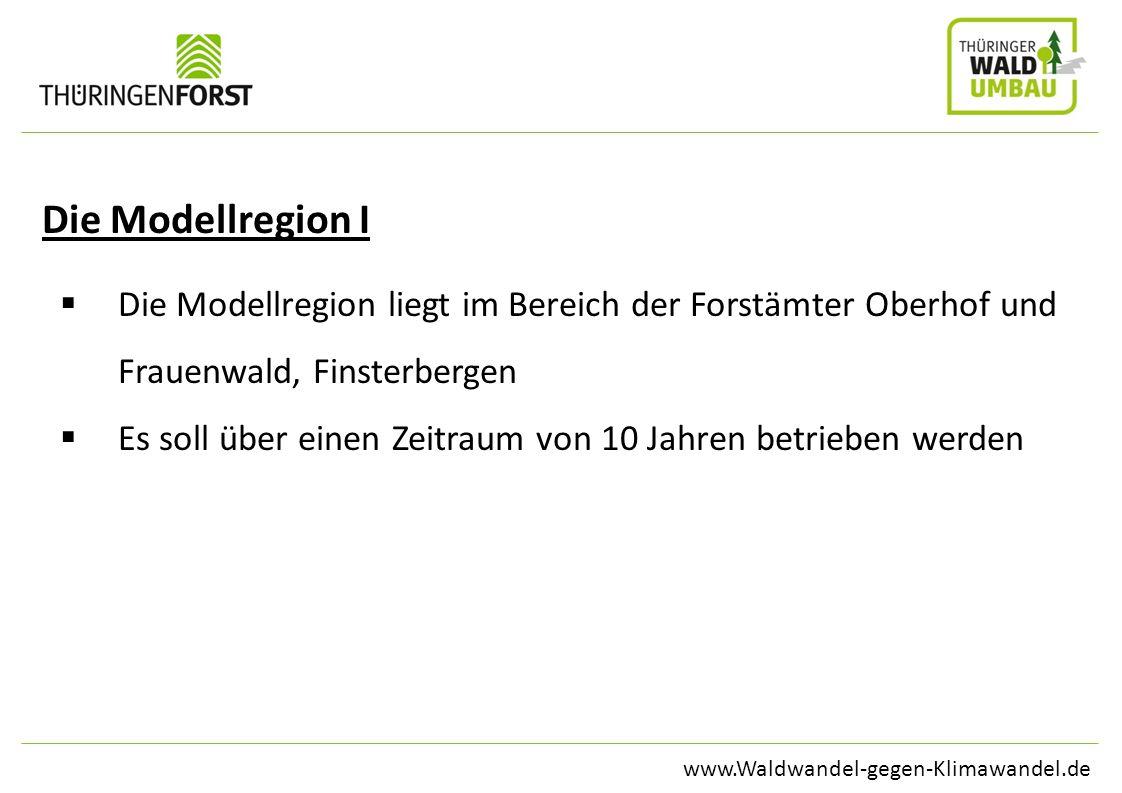 www.Waldwandel-gegen-Klimawandel.de Die Modellregion I Die Modellregion liegt im Bereich der Forstämter Oberhof und Frauenwald, Finsterbergen Es soll
