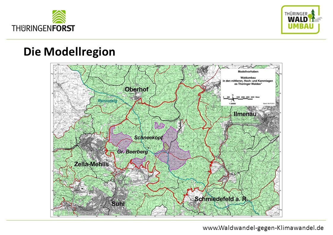 www.Waldwandel-gegen-Klimawandel.de Die Modellregion