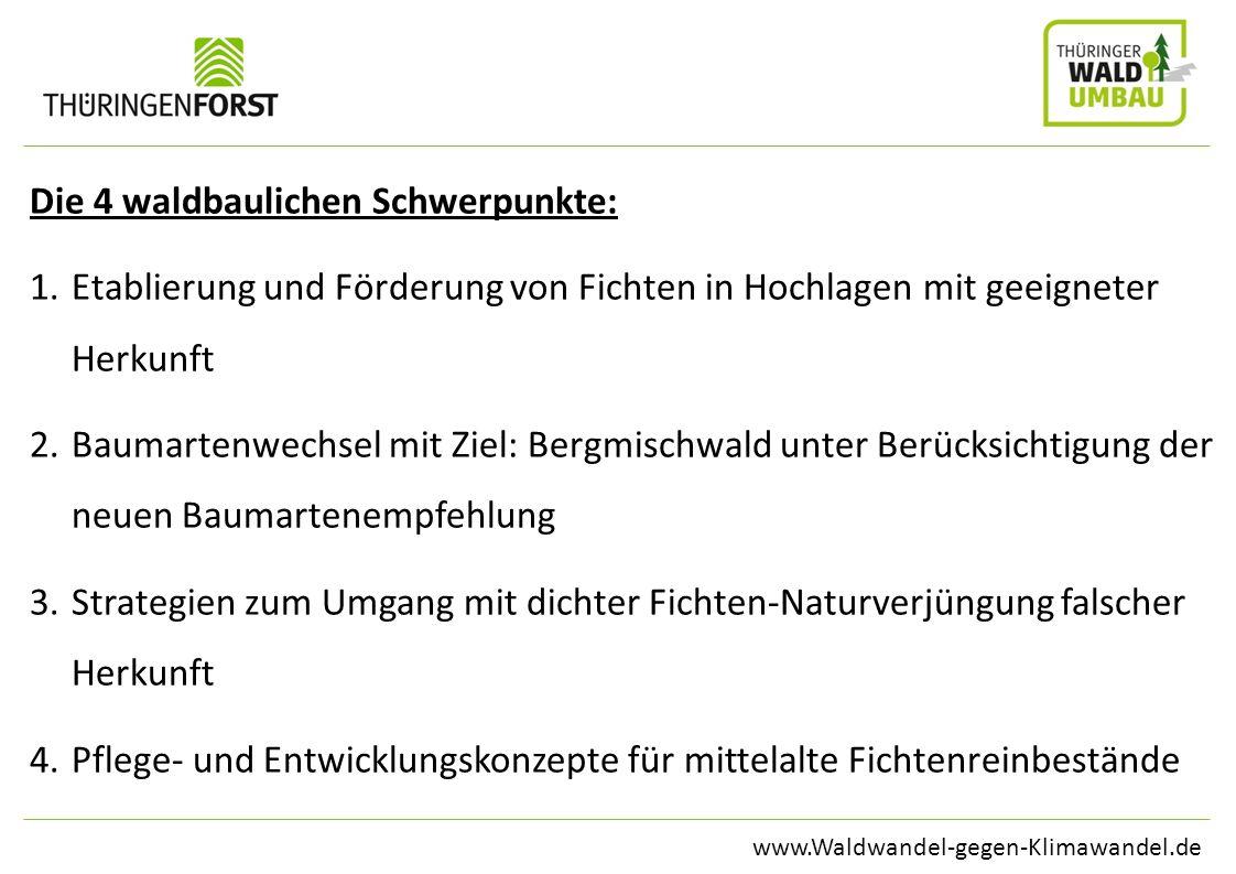 www.Waldwandel-gegen-Klimawandel.de Die 4 waldbaulichen Schwerpunkte: 1.Etablierung und Förderung von Fichten in Hochlagen mit geeigneter Herkunft 2.B