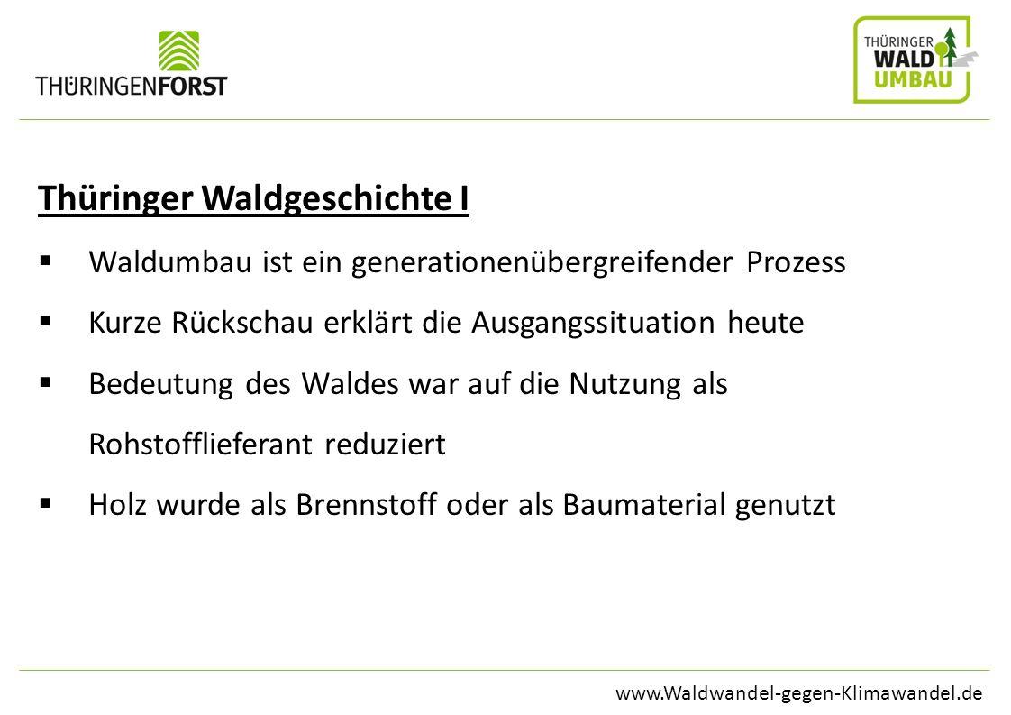 www.Waldwandel-gegen-Klimawandel.de Thüringer Waldgeschichte I Waldumbau ist ein generationenübergreifender Prozess Kurze Rückschau erklärt die Ausgan