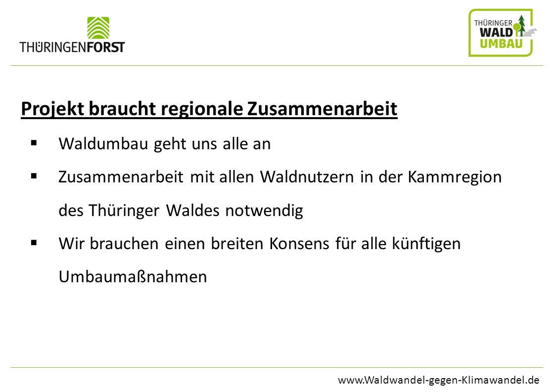 www.Waldwandel-gegen-Klimawandel.de Projekt braucht regionale Zusammenarbeit Waldumbau geht uns alle an Zusammenarbeit mit allen Waldnutzern in der Ka