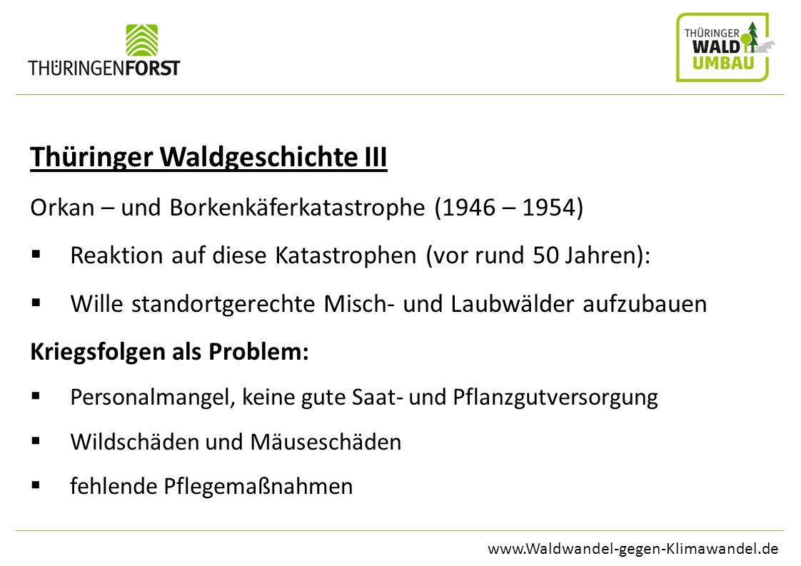 www.Waldwandel-gegen-Klimawandel.de Thüringer Waldgeschichte III Orkan – und Borkenkäferkatastrophe (1946 – 1954) Reaktion auf diese Katastrophen (vor