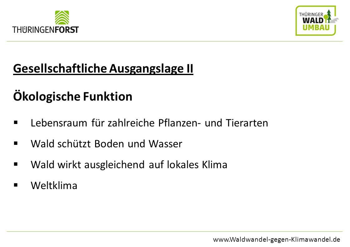 www.Waldwandel-gegen-Klimawandel.de Gesellschaftliche Ausgangslage II Ökologische Funktion Lebensraum für zahlreiche Pflanzen- und Tierarten Wald schü