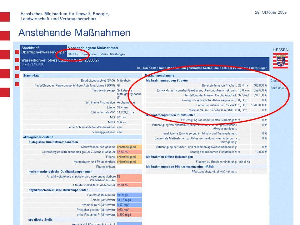 Hessisches Ministerium für Umwelt, Energie, Landwirtschaft und Verbraucherschutz 28. Oktober 2009 Anstehende Maßnahmen