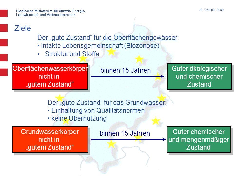 Hessisches Ministerium für Umwelt, Energie, Landwirtschaft und Verbraucherschutz 28. Oktober 2009 Ziele Der gute Zustand für die Oberflächengewässer: