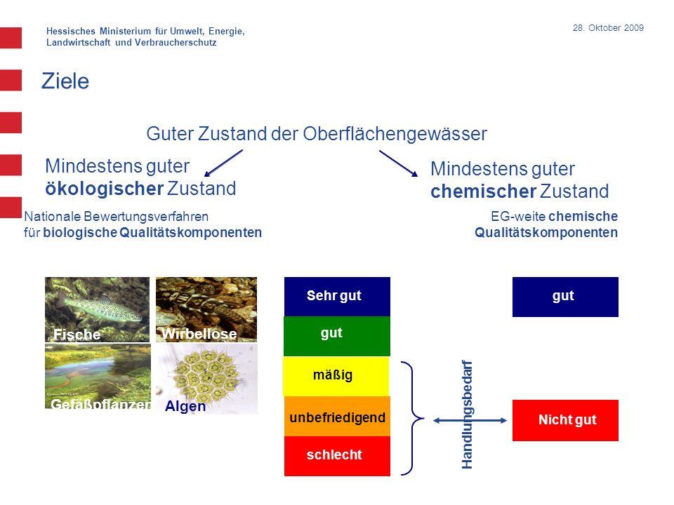 Hessisches Ministerium für Umwelt, Energie, Landwirtschaft und Verbraucherschutz 28. Oktober 2009 Ziele Guter Zustand der Oberflächengewässer Mindeste