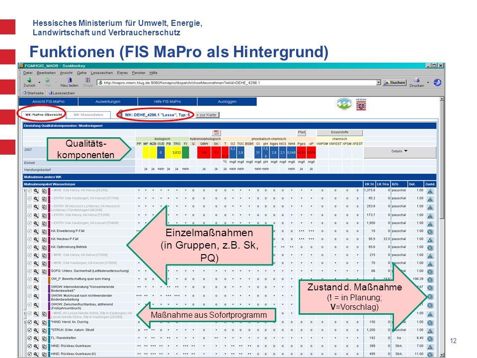 Hessisches Ministerium für Umwelt, Energie, Landwirtschaft und Verbraucherschutz 12 Funktionen (FIS MaPro als Hintergrund) Qualitäts- komponenten Einz