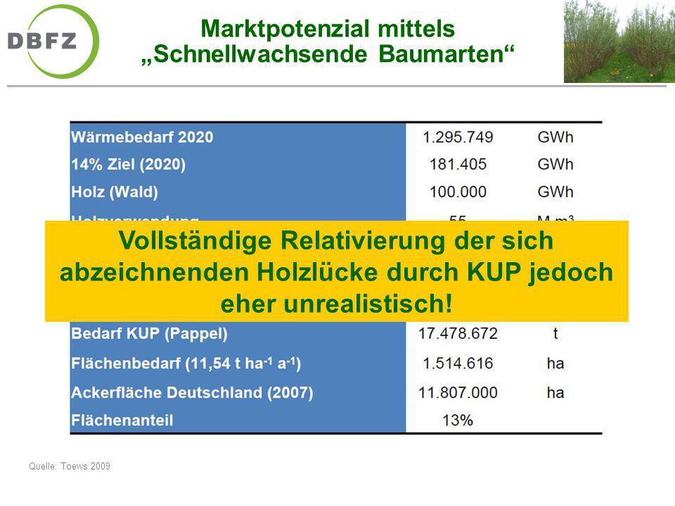 Marktpotenzial mittels Schnellwachsende Baumarten Quelle: Toews 2009 Vollständige Relativierung der sich abzeichnenden Holzlücke durch KUP jedoch eher