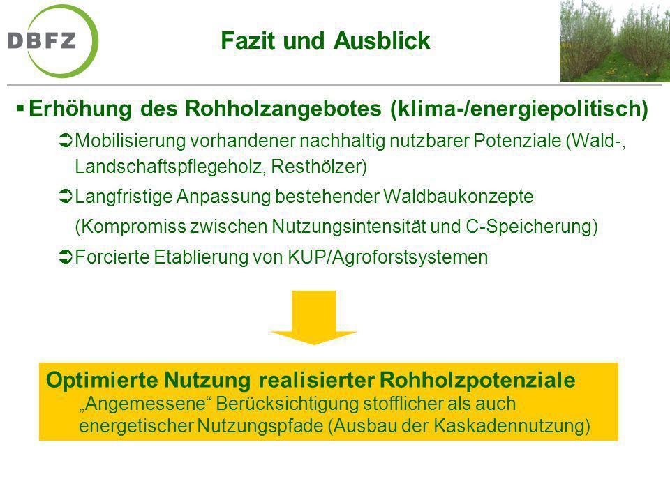 Fazit und Ausblick Erhöhung des Rohholzangebotes (klima-/energiepolitisch) Mobilisierung vorhandener nachhaltig nutzbarer Potenziale (Wald-, Landschaf