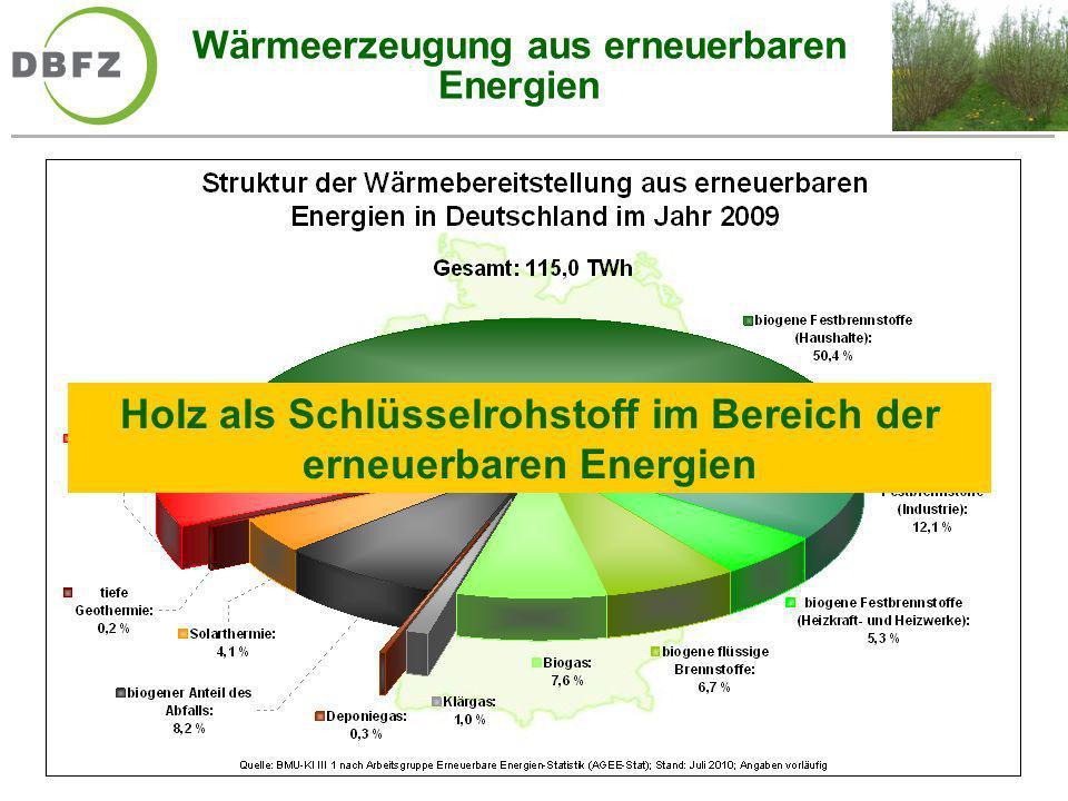 Wärmeerzeugung aus erneuerbaren Energien Holz als Schlüsselrohstoff im Bereich der erneuerbaren Energien