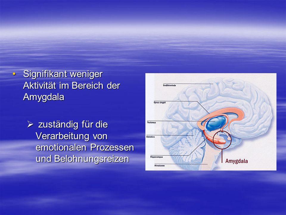 Signifikant weniger Aktivität im Bereich der AmygdalaSignifikant weniger Aktivität im Bereich der Amygdala zuständig für die Verarbeitung von emotiona