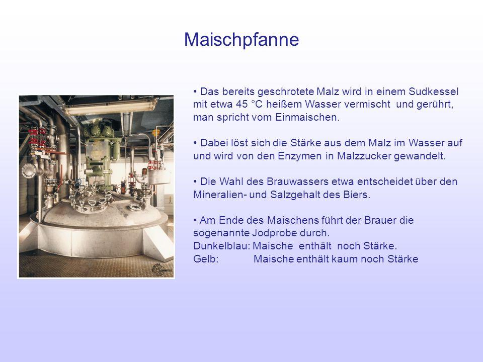 Maischpfanne Das bereits geschrotete Malz wird in einem Sudkessel mit etwa 45 °C heißem Wasser vermischt und gerührt, man spricht vom Einmaischen. Dab