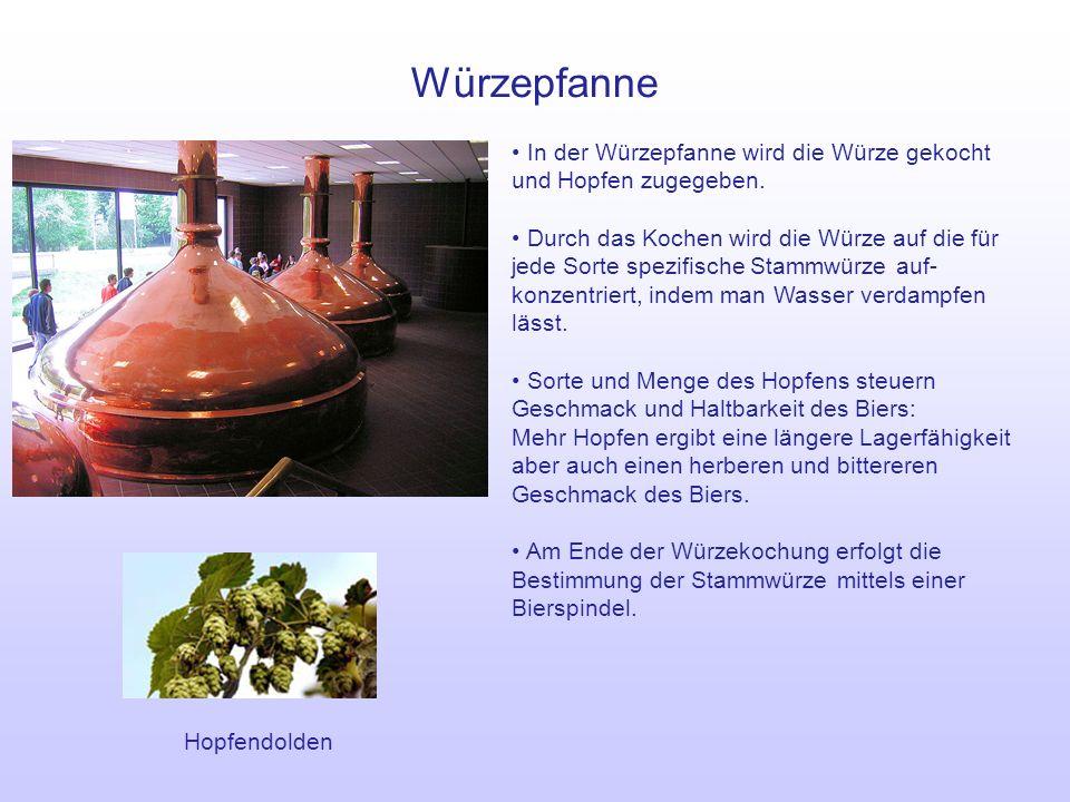 Whirlpool/Kühler Im Whirlpool werden die in der Würze vorhandenen nicht gelösten Hopfen- und Eiweißbestandteile aus der Würze entfernt.