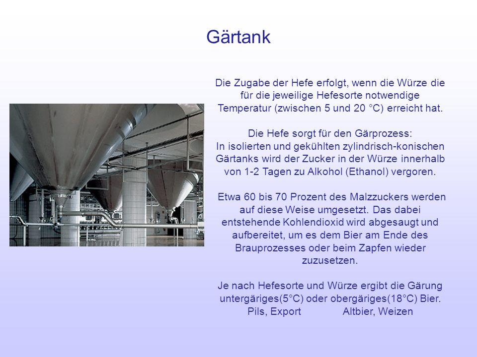 Lagertank Das Bier wird anschließend in Lagertanks nachgegoren: Der noch vorhandene Zucker wird in Alkohol umgesetzt.