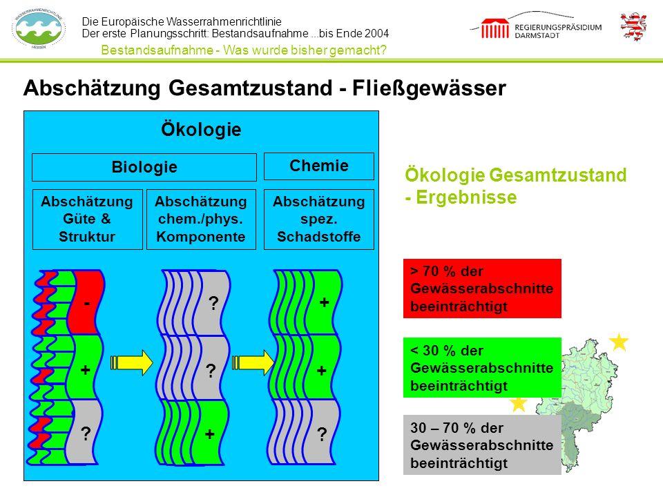 Die Europäische Wasserrahmenrichtlinie Der erste Planungsschritt: Bestandsaufnahme...bis Ende 2004 Abschätzung Gesamtzustand - Fließgewässer Biologie