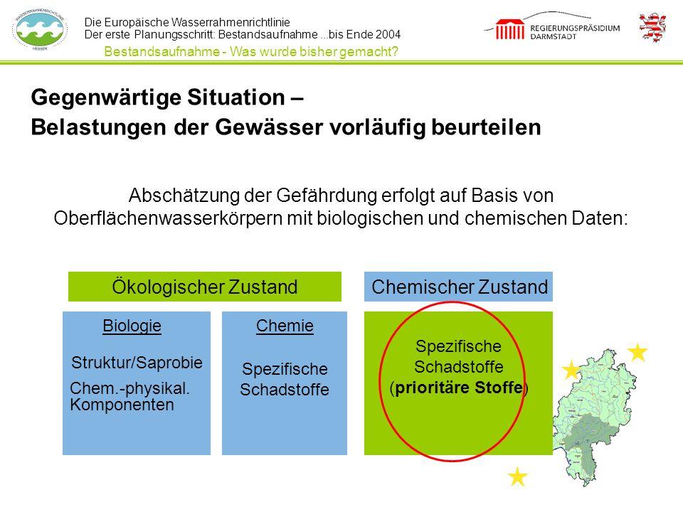 Die Europäische Wasserrahmenrichtlinie Der erste Planungsschritt: Bestandsaufnahme...bis Ende 2004 Bestandsaufnahme - Was wurde bisher gemacht? Abschä