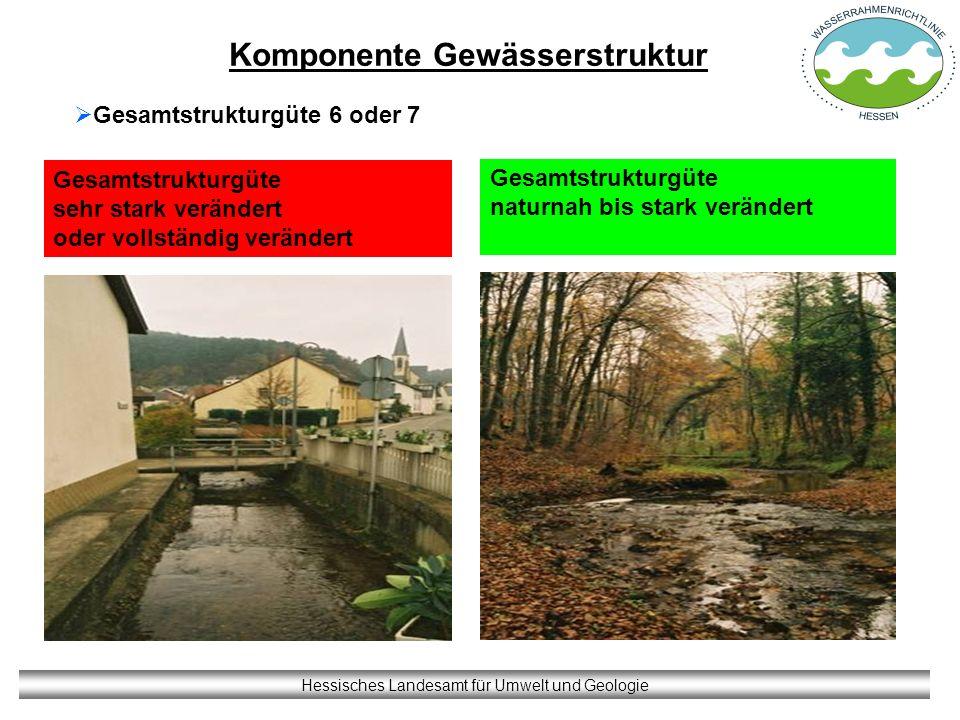 Komponente Gewässerstruktur Hessisches Landesamt für Umwelt und Geologie Gesamtstrukturgüte sehr stark verändert oder vollständig verändert Gesamtstru