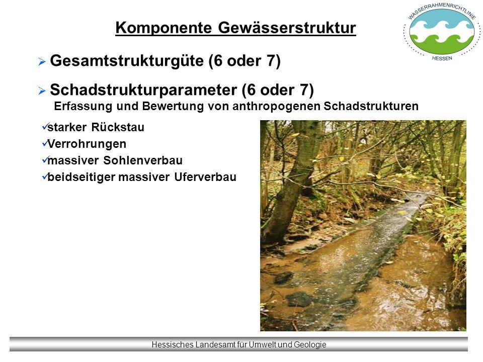 Komponente Gewässerstruktur Hessisches Landesamt für Umwelt und Geologie Gesamtstrukturgüte (6 oder 7) Schadstrukturparameter (6 oder 7) Erfassung und