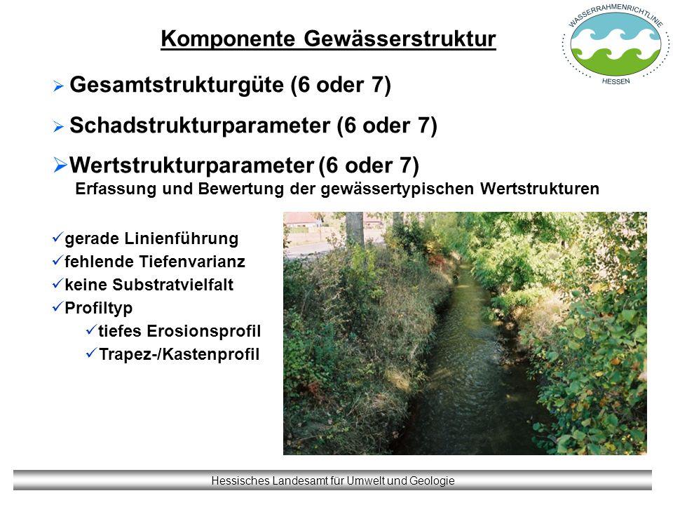 Komponente Gewässerstruktur Hessisches Landesamt für Umwelt und Geologie Gesamtstrukturgüte (6 oder 7) Schadstrukturparameter (6 oder 7) Wertstrukturp