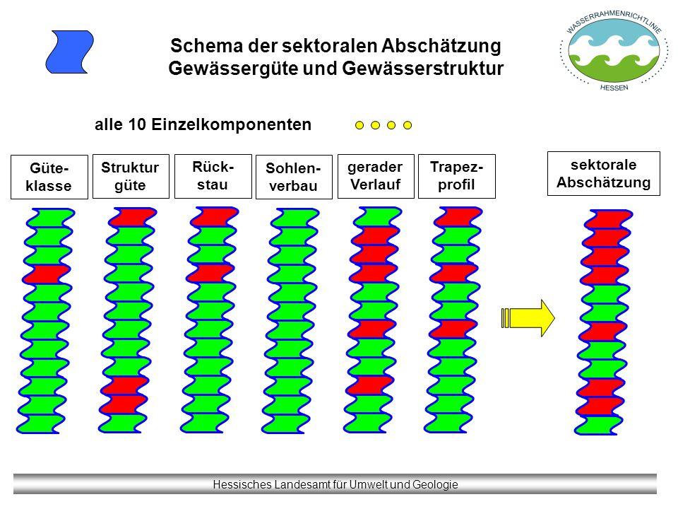 Hessisches Landesamt für Umwelt und Geologie Schema der sektoralen Abschätzung Gewässergüte und Gewässerstruktur alle 10 Einzelkomponenten Rück- stau