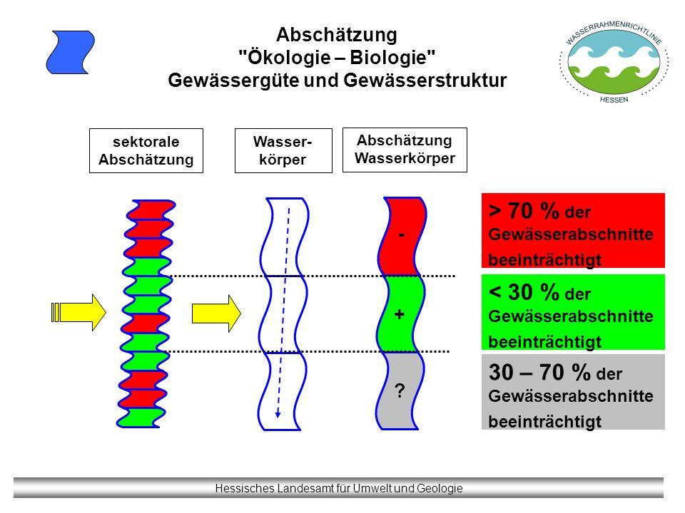 Hessisches Landesamt für Umwelt und Geologie Abschätzung