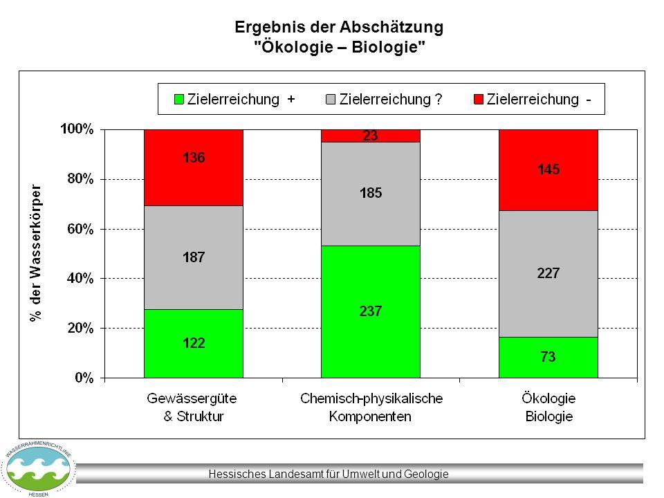 Hessisches Landesamt für Umwelt und Geologie Ergebnis der Abschätzung