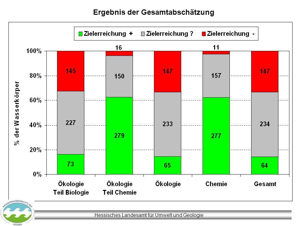 Hessisches Landesamt für Umwelt und Geologie Ergebnis der Gesamtabschätzung