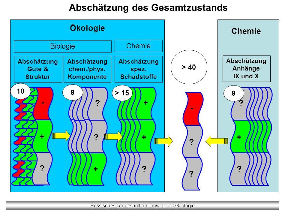 Hessisches Landesamt für Umwelt und Geologie Abschätzung des Gesamtzustands Biologie Abschätzung Anhänge IX und X Chemie Abschätzung Güte & Struktur A