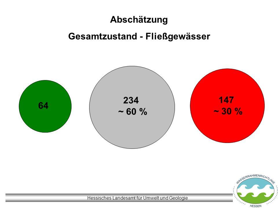 Hessisches Landesamt für Umwelt und Geologie 64 234 ~ 60 % 147 ~ 30 % Abschätzung Gesamtzustand - Fließgewässer