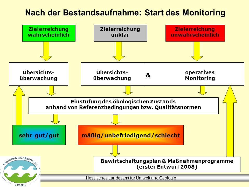 Nach der Bestandsaufnahme: Start des Monitoring Hessisches Landesamt für Umwelt und Geologie Zielerreichung wahrscheinlich Zielerreichung unklar Ziele