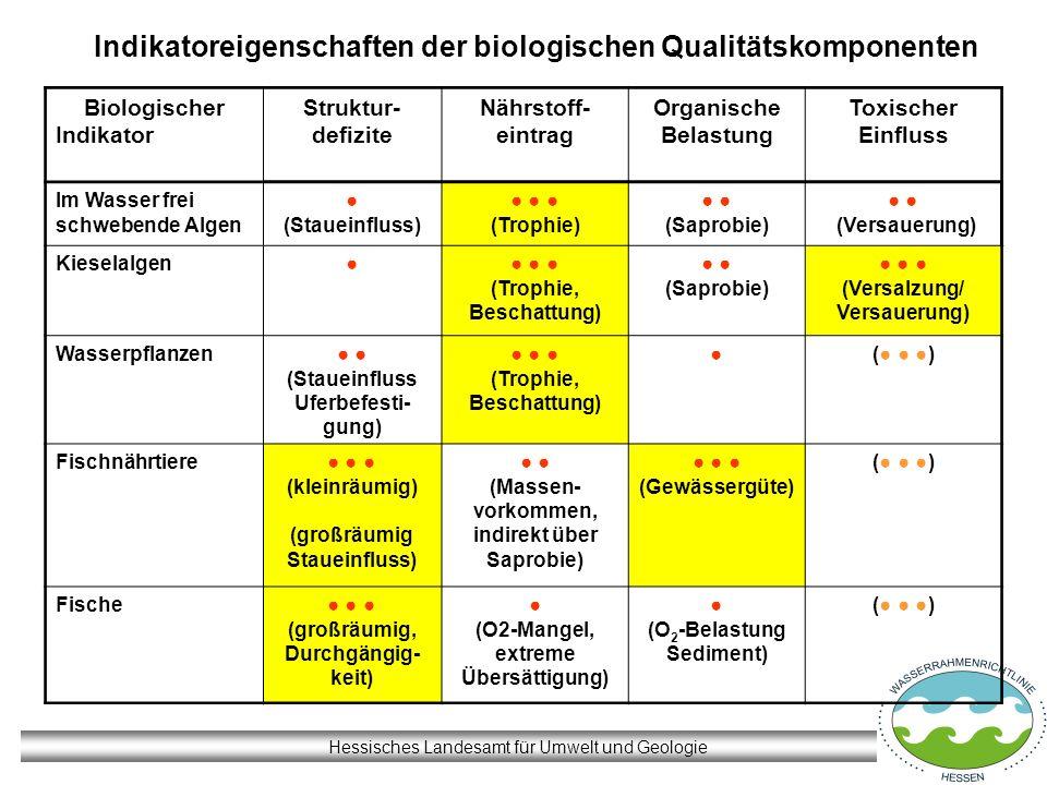 Hessisches Landesamt für Umwelt und Geologie Indikatoreigenschaften der biologischen Qualitätskomponenten Biologischer Indikator Struktur- defizite Nä