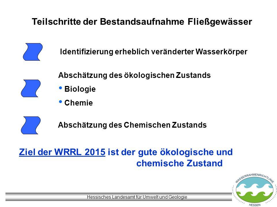 Hessisches Landesamt für Umwelt und Geologie Teilschritte der Bestandsaufnahme Fließgewässer Identifizierung erheblich veränderter Wasserkörper Abschä