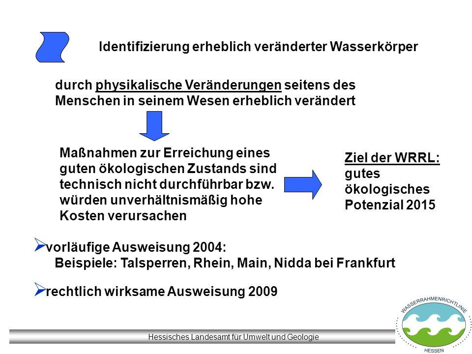 Hessisches Landesamt für Umwelt und Geologie Identifizierung erheblich veränderter Wasserkörper vorläufige Ausweisung 2004: Beispiele: Talsperren, Rhe