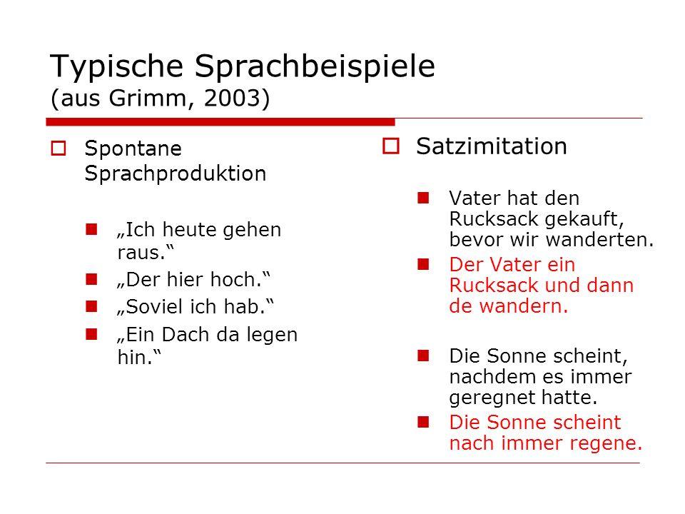 Typische Sprachbeispiele (aus Grimm, 2003) Spontane Sprachproduktion Ich heute gehen raus. Der hier hoch. Soviel ich hab. Ein Dach da legen hin. Satzi