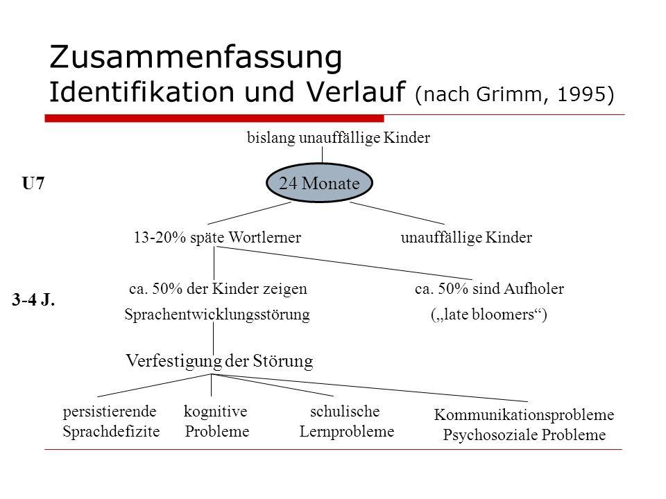 Zusammenfassung Identifikation und Verlauf (nach Grimm, 1995) persistierende Sprachdefizite kognitive Probleme schulische Lernprobleme Kommunikationsp