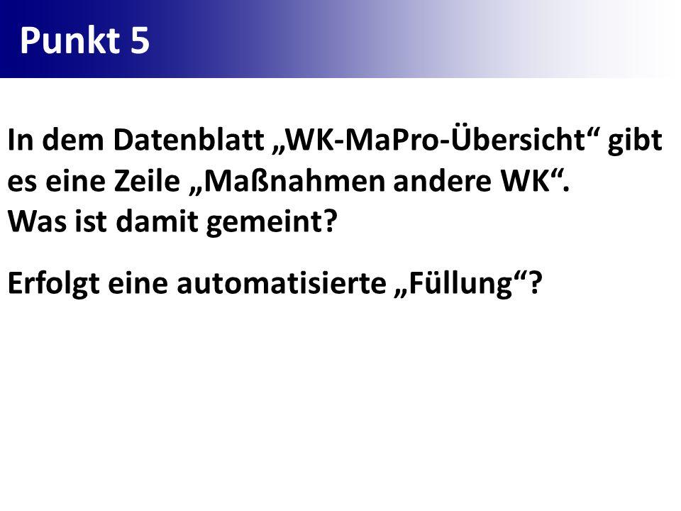 Punkt 5 In dem Datenblatt WK-MaPro-Übersicht gibt es eine Zeile Maßnahmen andere WK. Was ist damit gemeint? Erfolgt eine automatisierte Füllung?