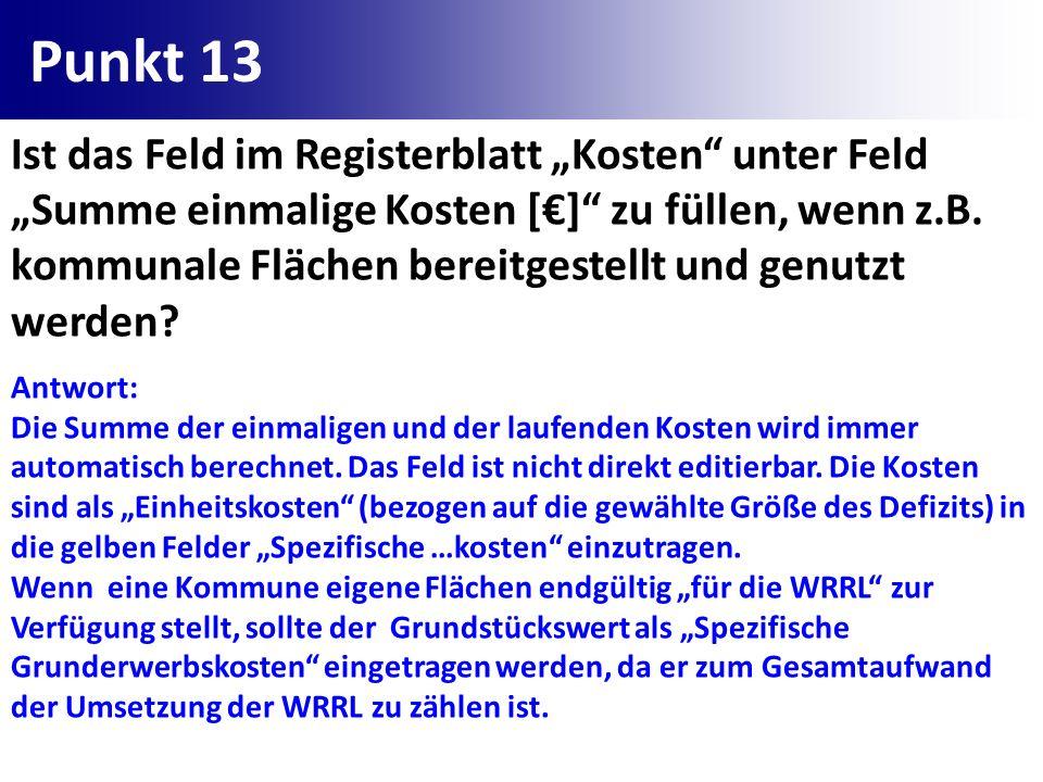 Punkt 13 Ist das Feld im Registerblatt Kosten unter Feld Summe einmalige Kosten [] zu füllen, wenn z.B. kommunale Flächen bereitgestellt und genutzt w