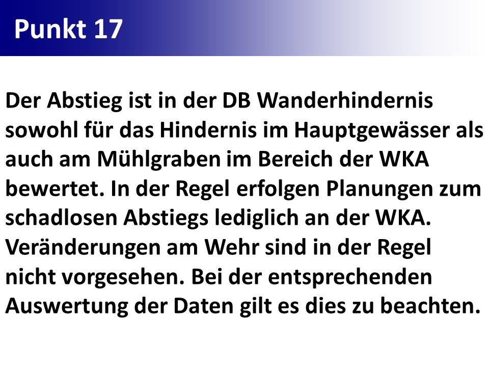 Punkt 17 Der Abstieg ist in der DB Wanderhindernis sowohl für das Hindernis im Hauptgewässer als auch am Mühlgraben im Bereich der WKA bewertet. In de
