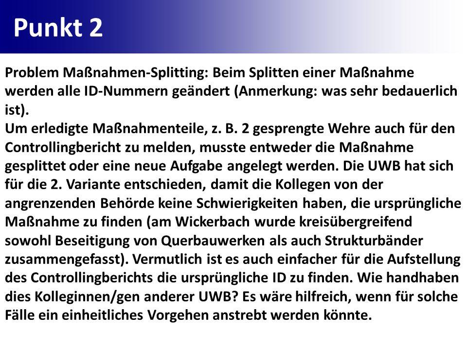Punkt 2 Problem Maßnahmen-Splitting: Beim Splitten einer Maßnahme werden alle ID-Nummern geändert (Anmerkung: was sehr bedauerlich ist). Um erledigte