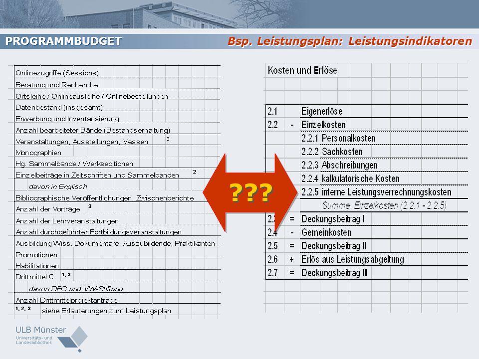 ??? Bsp. Leistungsplan: Leistungsindikatoren PROGRAMMBUDGET