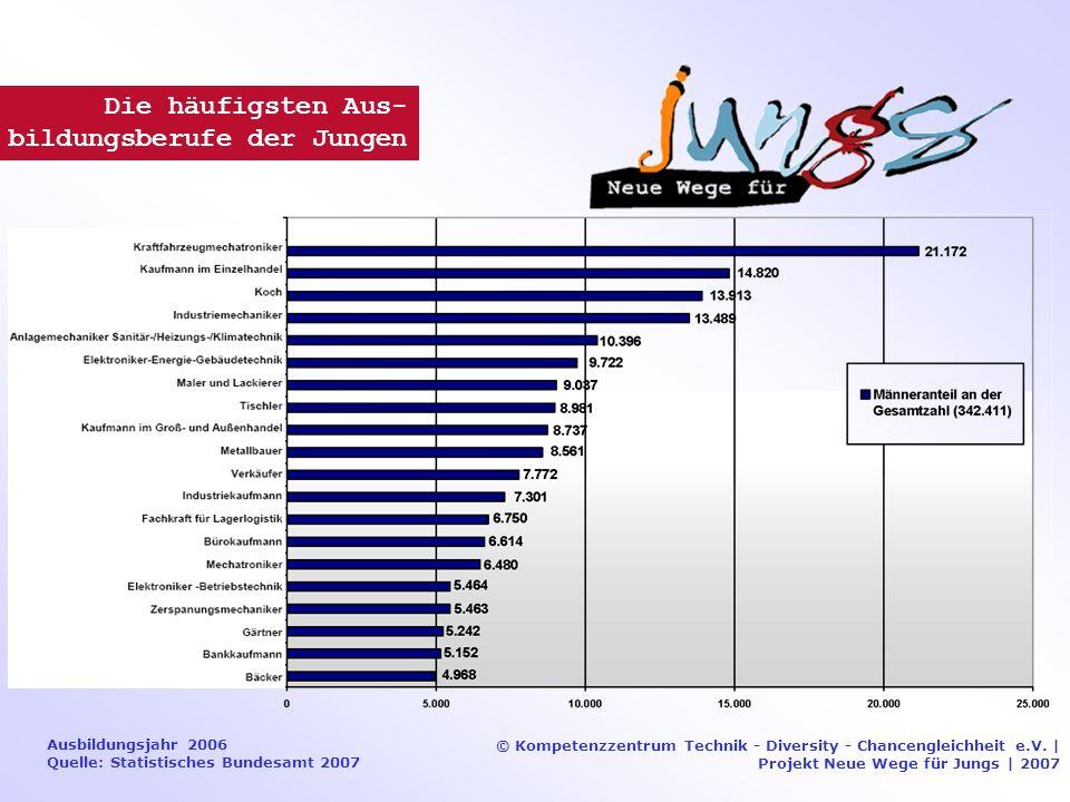 Ausbildungsjahr 2006 Quelle: Statistisches Bundesamt 2007 © Kompetenzzentrum Technik - Diversity - Chancengleichheit e.V.