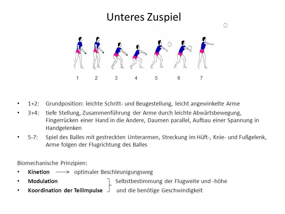 Unteres Zuspiel 1+2:Grundposition: leichte Schritt- und Beugestellung, leicht angewinkelte Arme 3+4: tiefe Stellung, Zusammenführung der Arme durch le